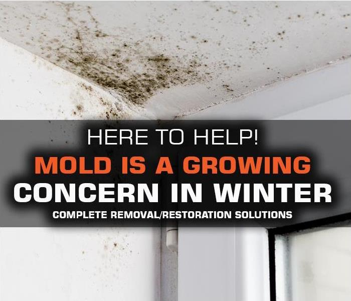 Why SERVPRO Mold Is A Growing Issue For NASSAU & SUFFOLK COUNTY Home and Business Owners on Long Island During Winter and Spring