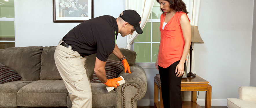 Medford, NY carpet upholstery cleaning